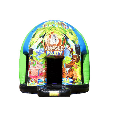 Disco Dome With Changeable Theme