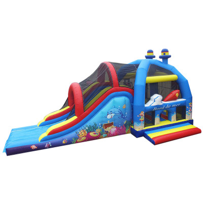 C2j Bouncy Castle With Slide