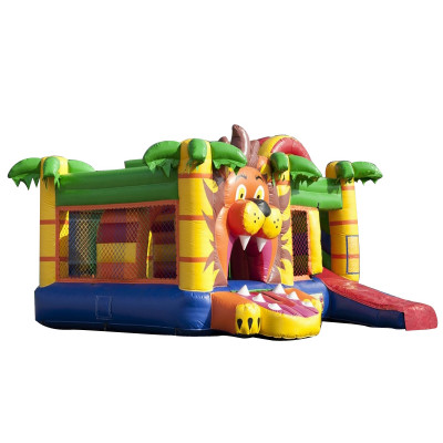 Lion Bouncy Castle Combo