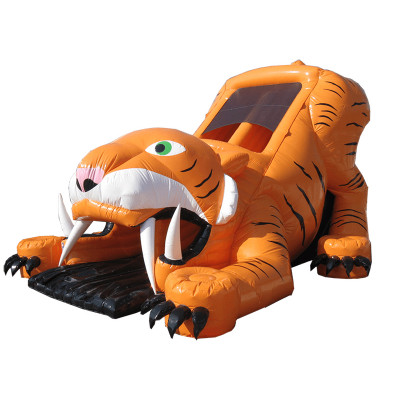 Big Tiger Slide