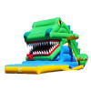 Crocodile Snappy Slide