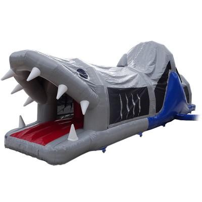 Shark Fun Run