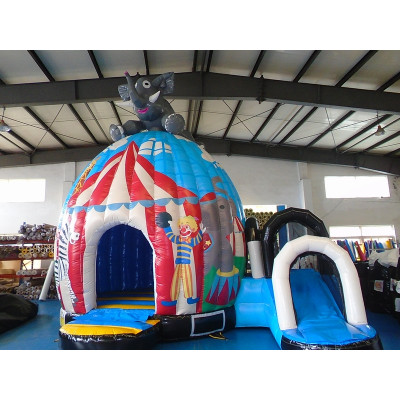 Bouncy Castle Disco Fun Circus