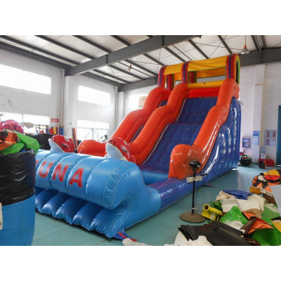 Inflatable Water Slides, Inflatable Water Slides For Sale